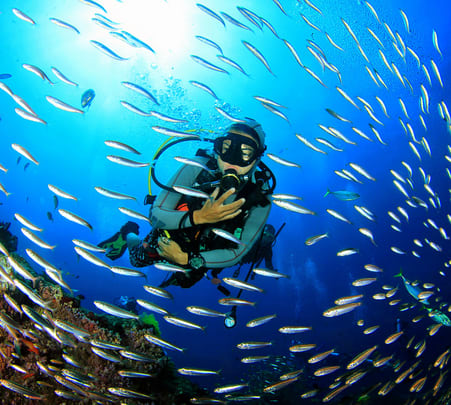 Scuba Diving With Snorkeling In Pondicherry Flat 17% Off