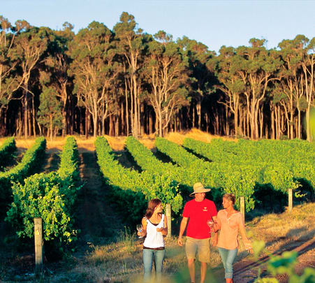 Margaret River Sightseeing Tour in Perth