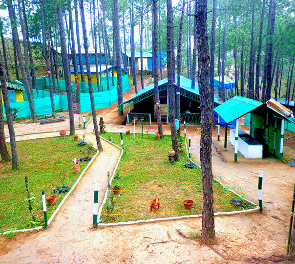 Eco Campsite with Activities, Shimla