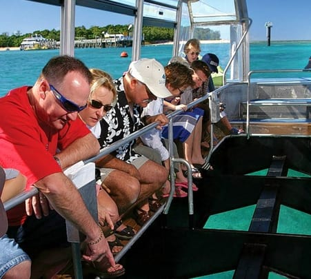 Silversonic Cruise from Port Douglas to Great Barrier Reef