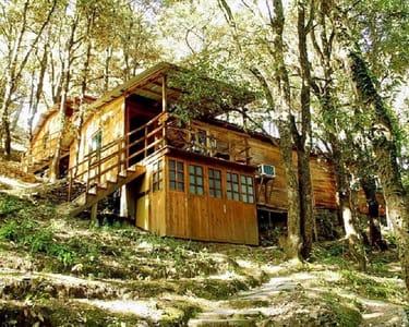 Aamod at Shoghi, Shimla | Book Now @ Flat 62% off