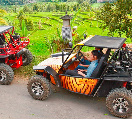 Atv Ride and Cycling at Munduk Langki in Bali