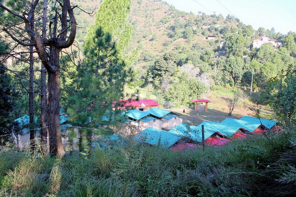 1587554263_camp-redwoods_(1).jpg