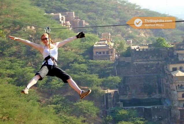 Neemrana_flying_fox_(1).jpg