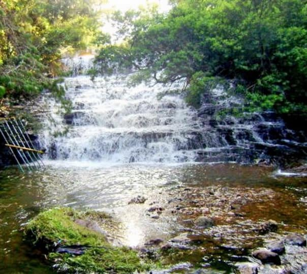 Pambar Falls Trekking, Kodaikanal
