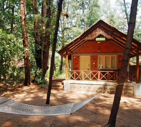 Resort Stay at Devbagh Beach