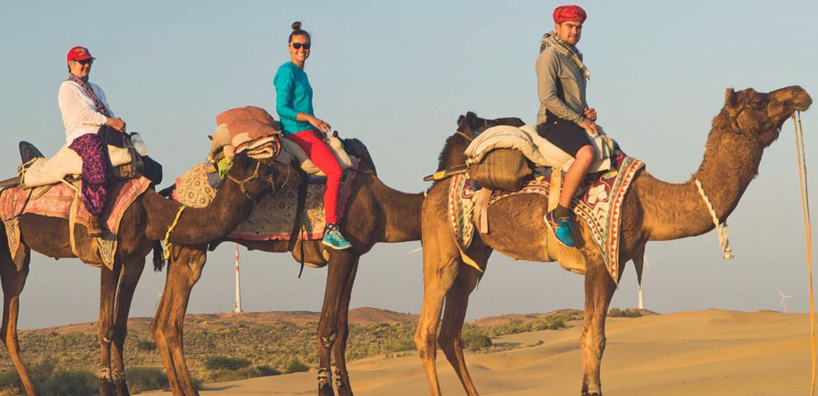 Hasil gambar untuk camel safari desert