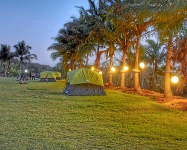 Camping at Karnala 2019, Flat 25% off