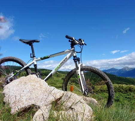 Downhill Cycle Trek to Naggar
