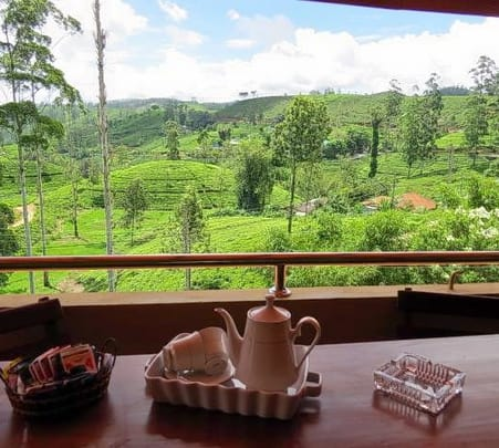 Tea Hills Tour in Sri Lanka