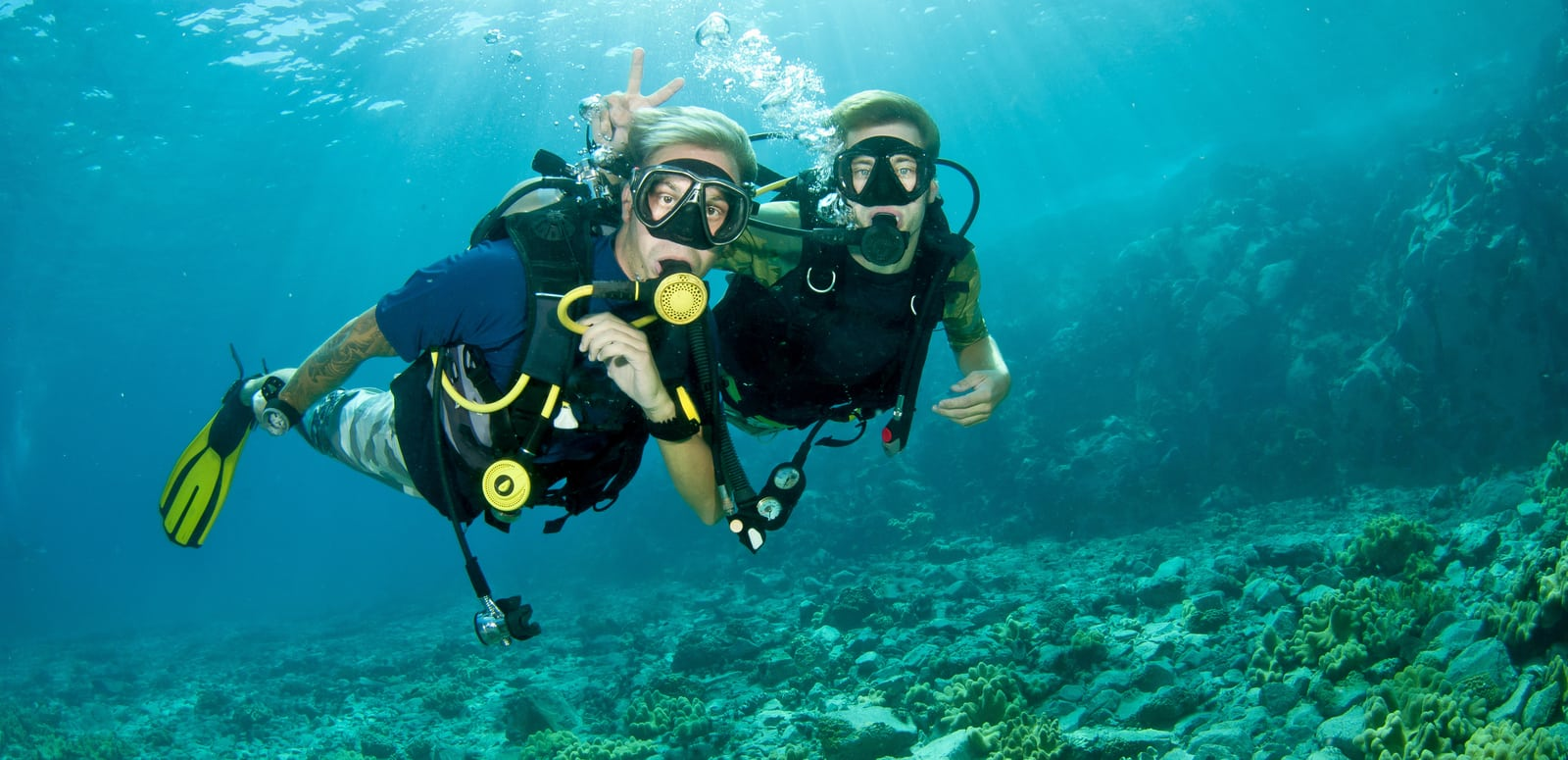 Image result for scuba diving trip