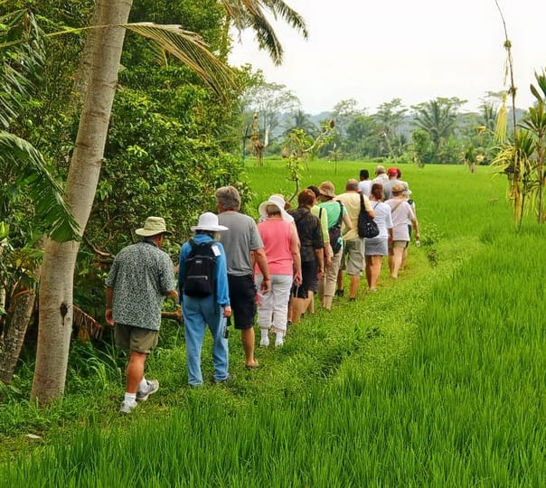 Trekking at Ubud in Bali