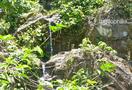 Chickmagalur-trekking_9522578526_o.jpg