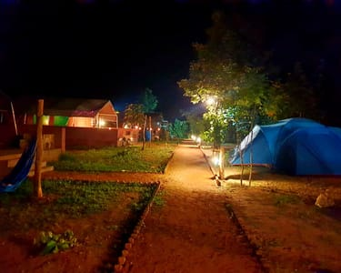Jungle Camping with Safari in Panna Flat 36% off
