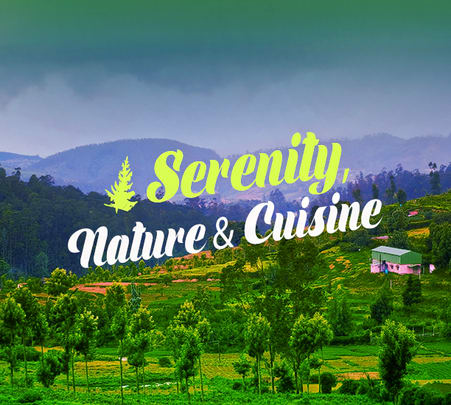 An Escape to the Wilderness of Nilgiris