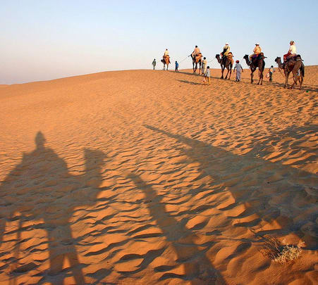 Dune Bashing and Camel Safari in Jaisalmer