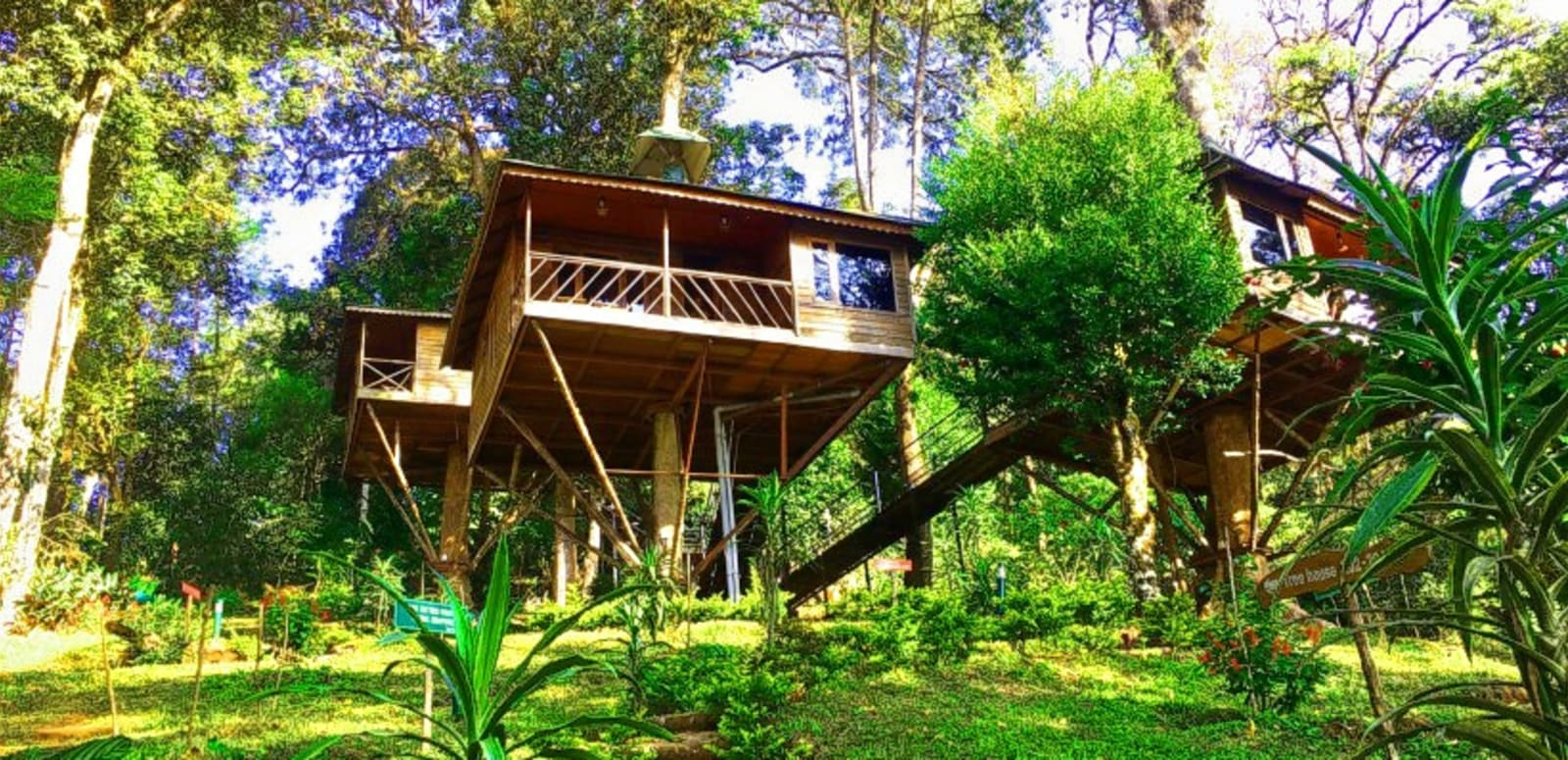20 Best Tree Houses In Kerala 2019 With Photos Reviews