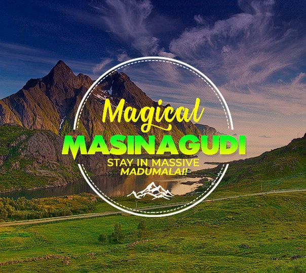 Adventure Jungle Stay in Masinagudi