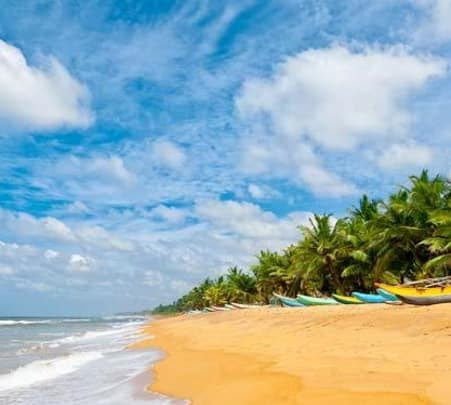 Kerala, Wildlife & Beach Tour