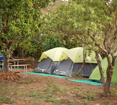 Camping with Trekking and Meals at Urumbi Hill