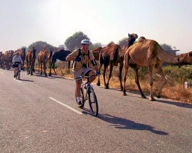 Cycling Tour in Pushkar