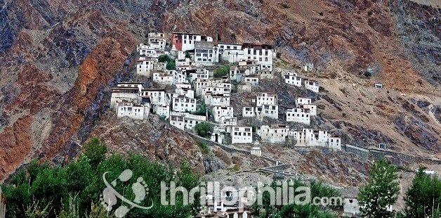 Karsha-3_ladakh.jpg