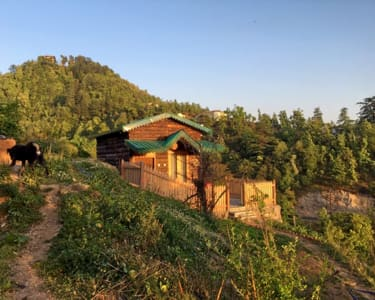 Lodge Stay in Mussoorie Flat 39% off