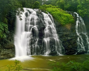 Full Day Sightseeing Tour of Coorg: Discover All Highlights