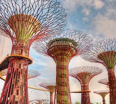 Gardens by the Bay Singapore - Flat 16% off