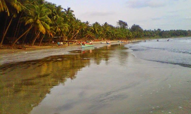 Nine Palm Bungalow Awas Beach Alibaug Maharashtra: 2020 (3400+ Reviews & Photos