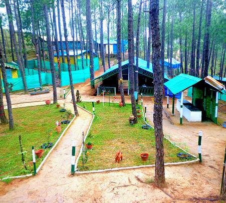 Eco Campsite with Activities, Shimla