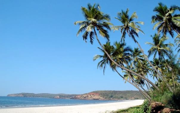 1463668966_welneswar_beach1.jpg