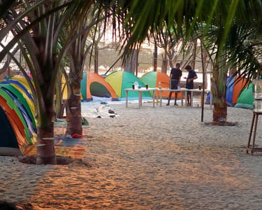Beach Camping in Alibaug | Book @ ₹ 1050 Only!