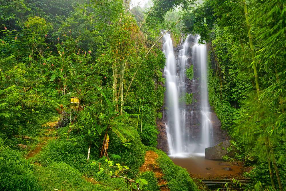 Watch Some Waterfalls in Munduk