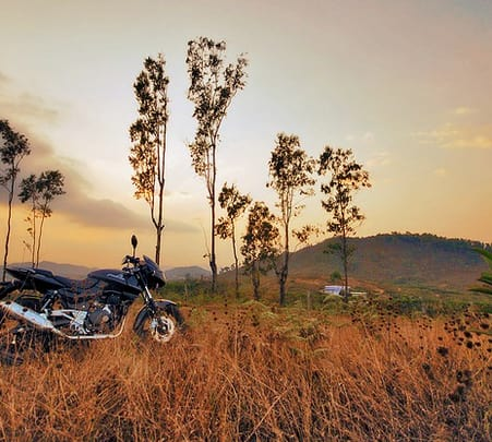Mysore, Coorg and Wayanad Tour