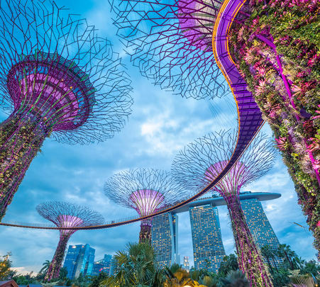 Singapore Tour Package from Chennai