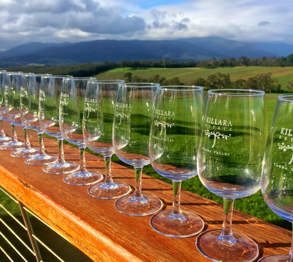 Day Tour to Yarra Valley Winery in Australia