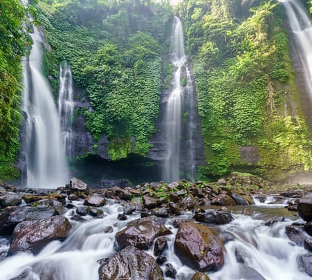 Sekumpul Waterfall Private Day Tour