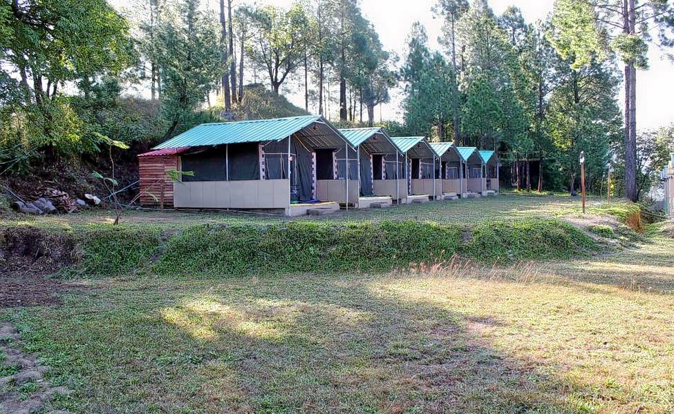 1587554824_1587554264_camp-redwoods.jpg.jpg