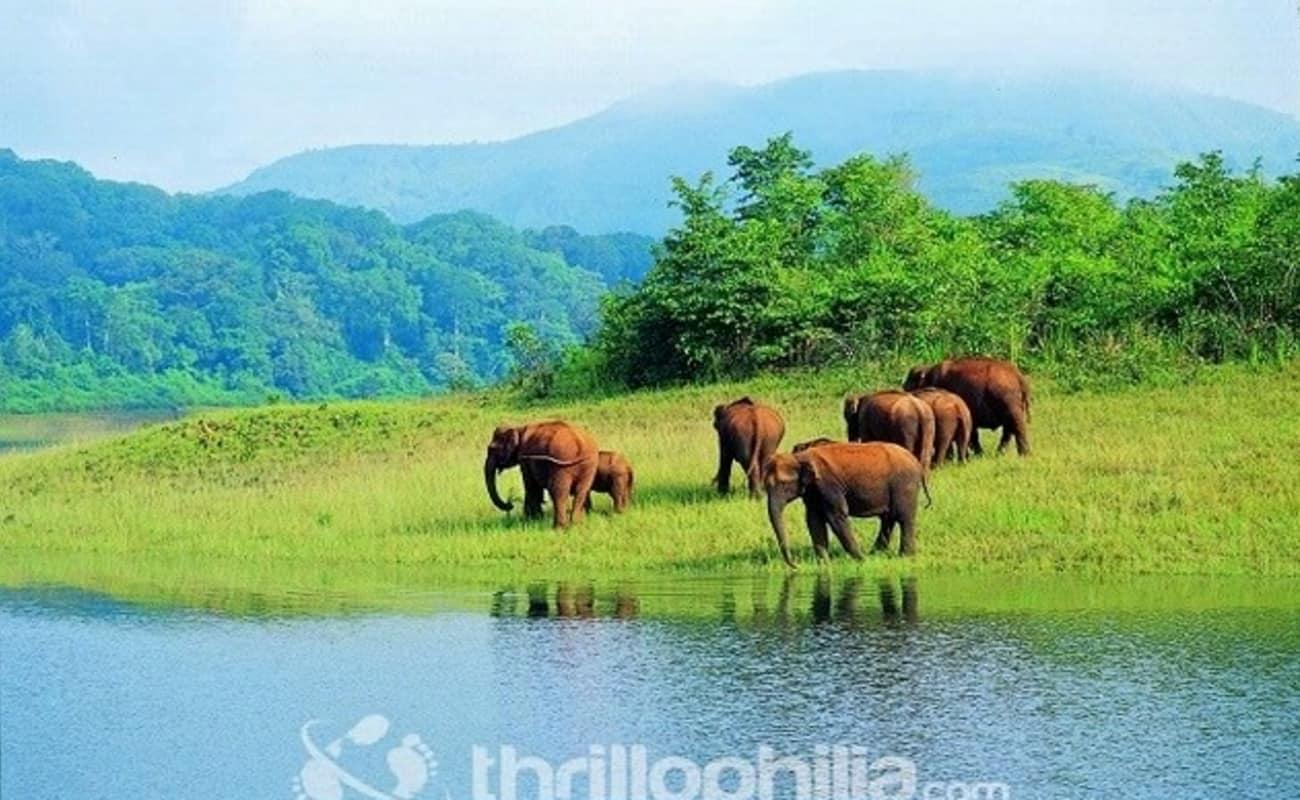 Kerala Tour Booking