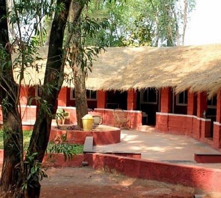Safari and Stay at Jungle Resort Amba