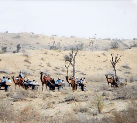 Camel Safari and Village Tour near Bikaner
