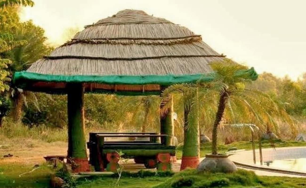 Day Out At Mango Mist Resort Bangalore Thrillophilia