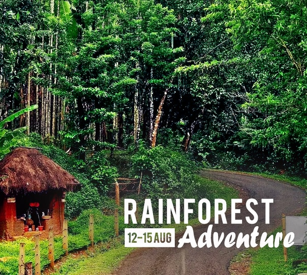Wildlife Getaway to Agumbe Rainforest