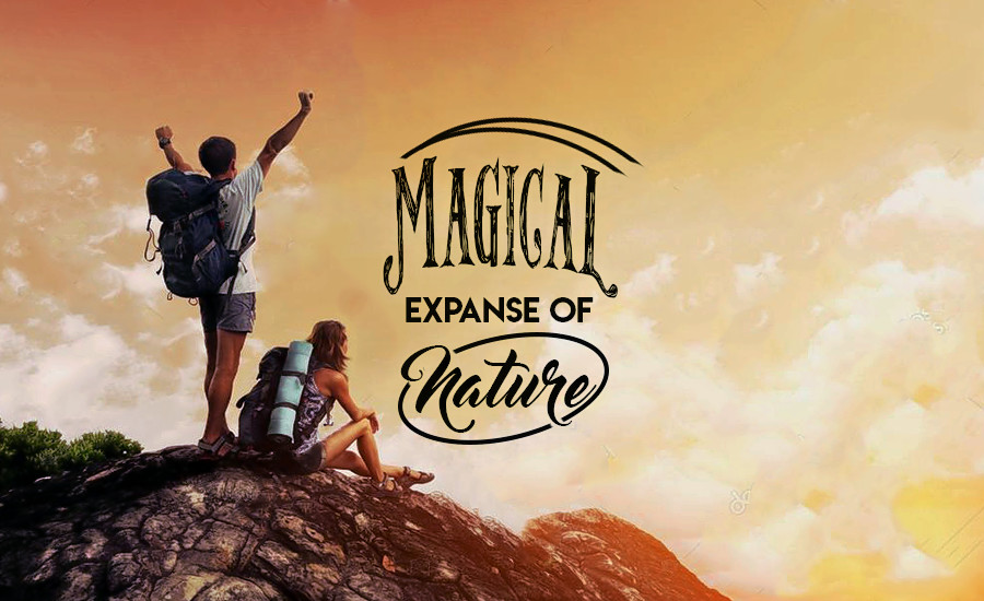 1504518516_magical_expanse_of_nature.png