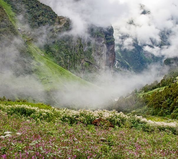 Valley of Flowers Trek in September
