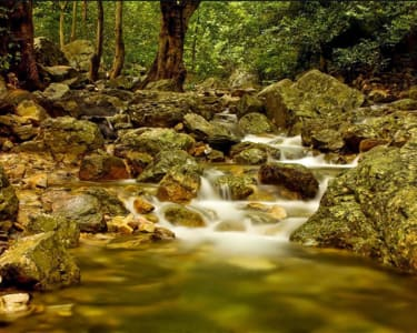Tada Waterfall Trek With Camping - 25% Off