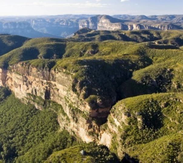 Blue Mountains, Wildlife and Cruise Tour in Australia