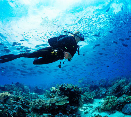 Scuba Diving in Dubai - Flat 10% off