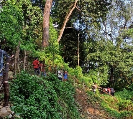 Bamonpokhri Jungle Trek in Darjeeling